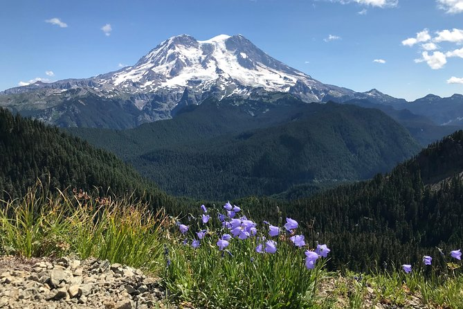 Face-to-Face with the Glaciers of Rainier