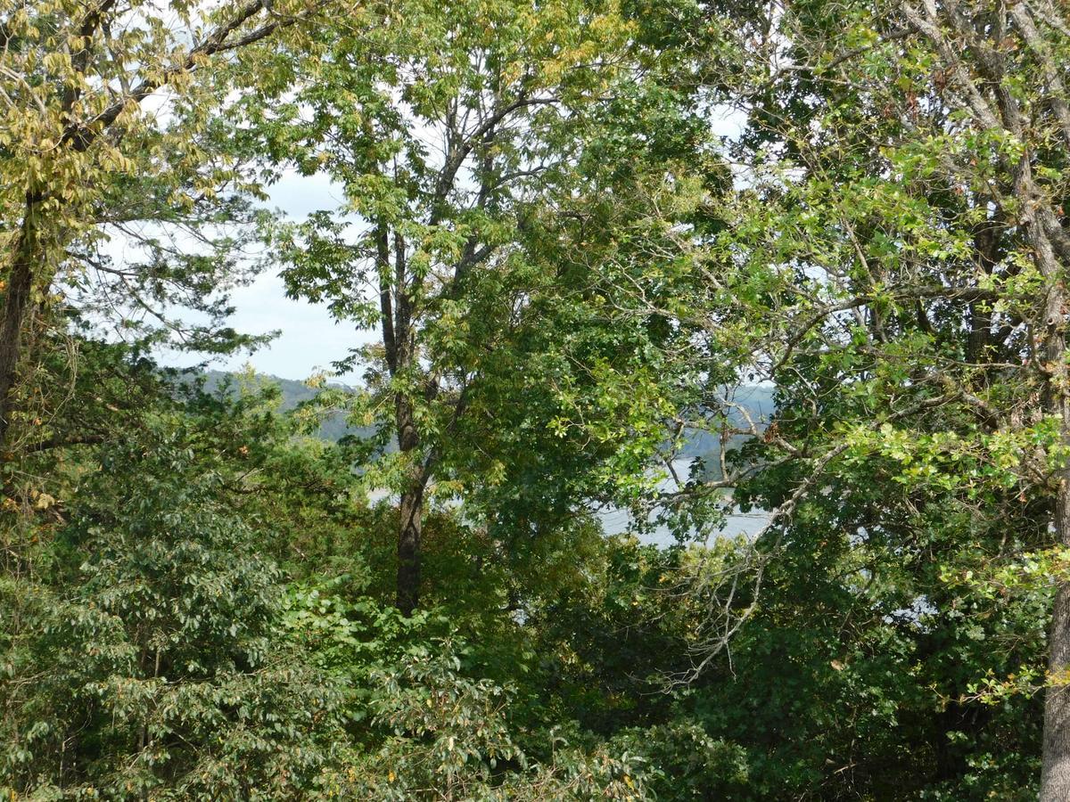 North Shore Resort on Bull Shoals Lake