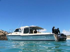 Kangaroo Island Dive and Adventures Image