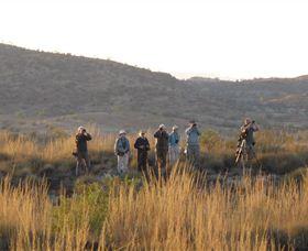 Mark Carter Birding and Wildlife Image