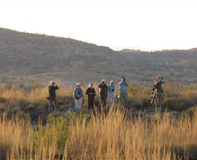 Mark Carter Birding and Wildlife Expedition Image